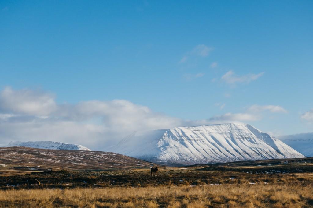 Iceland 2014 -109